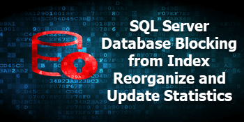 QnA VBage Why is INDEX REORGANIZE and UPDATE STATISTICS causing SQL Server blocking?