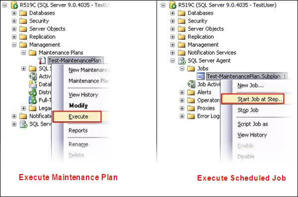 The Maintenance Plans folder may be in a slightly different location in SQL Server 2005 and 2008, but it will be under the Management folder