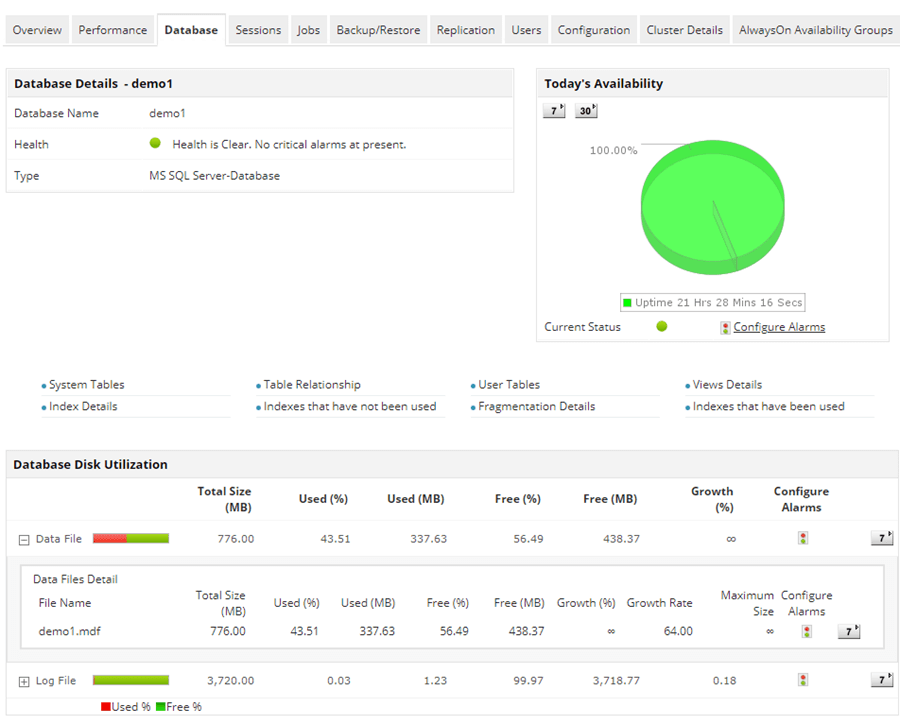 ManageEngine Application Manager Database tab with database details