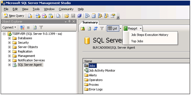 Built in SQL Server Agent Performance Reports in SQL Server 2005