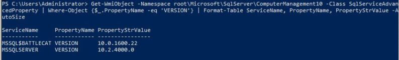 using the powershell script