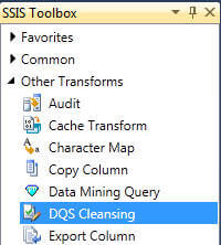 DQS Cleansing appears as shown