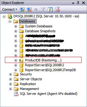How to Restart an Interrupted SQL Server Database Restore