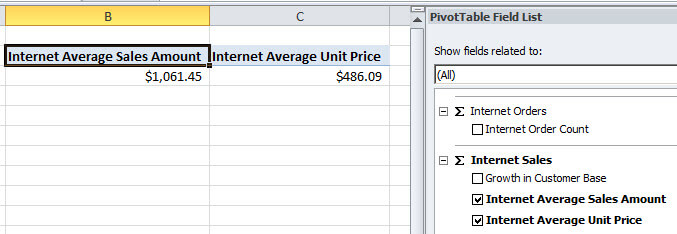 click the Internet Average Sales Amount and the Internet Average Unit Price of the company in Excel.