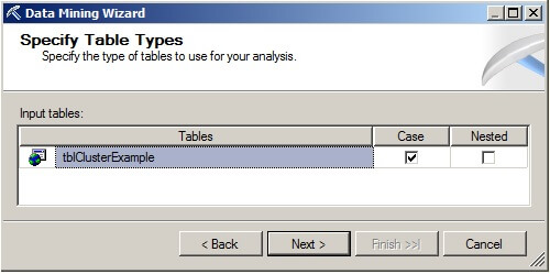 On the Specify Table Types page, make sure the Case box is checked and the Nested box is unchecked for the table named tblClusterExample.