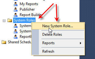 New System Role