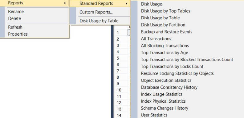 Standard Reports on the Database Object
