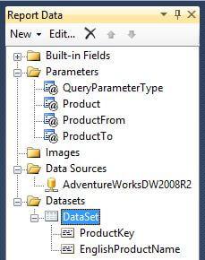 Report Data Pane after creating main dataset