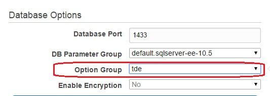 Chosing Option Group when creating an RDS instance