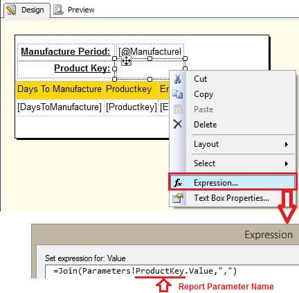 ProductKey Report Parameter Expression