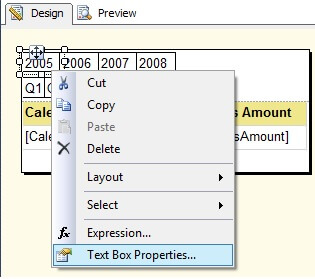 Year 2005 Tab Textbox Properties Window
