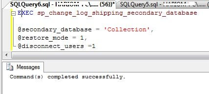 Run sp_change_log_shipping_secondary_database