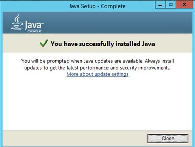 You have successfully installed Java