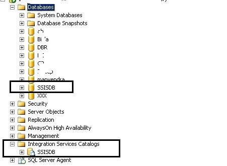 SSISDB database and catalog in SSMS