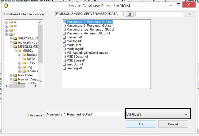 Attach Database files