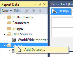 Add data set in SSRS