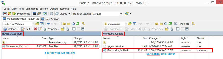 WinSCP of the SQL Server Backup Files