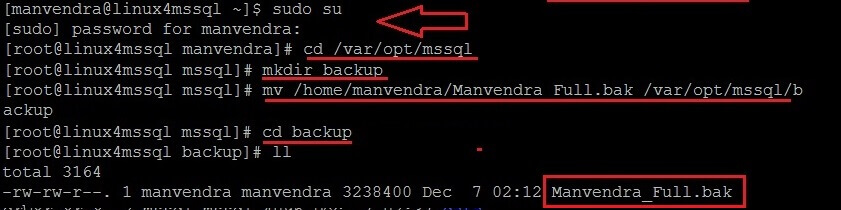 copy the SQL Server backup file to the backup folder