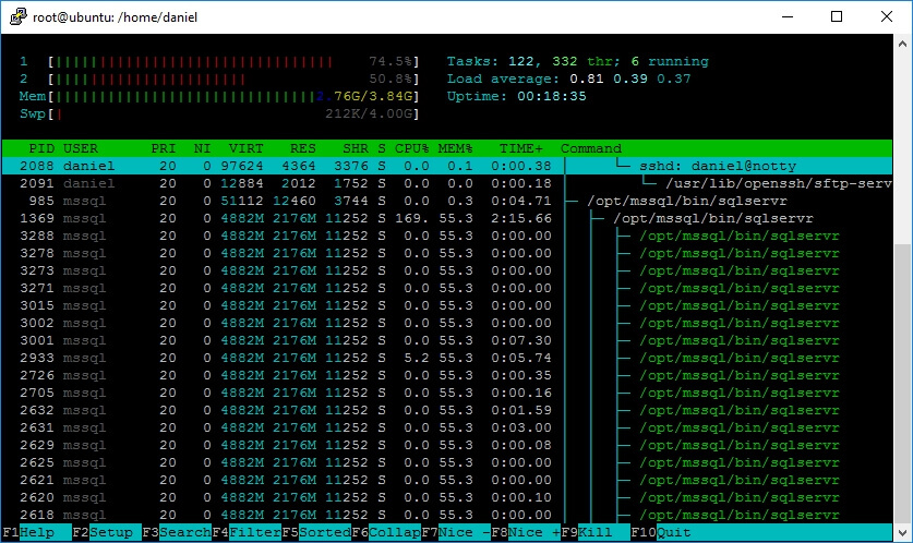 Screen capture of htop command output.