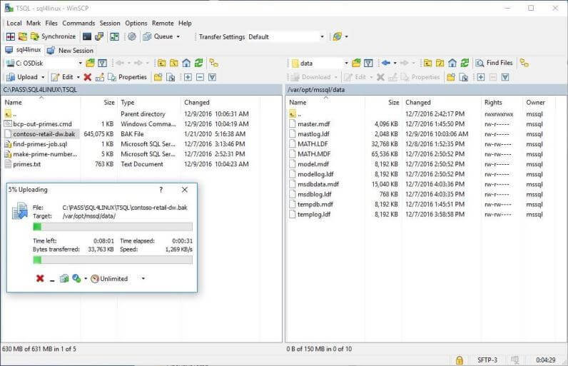 WinSCP - Upload Backup File