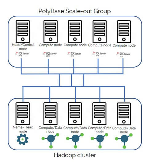 hadoop cluster and PolyBase Scale-out Group