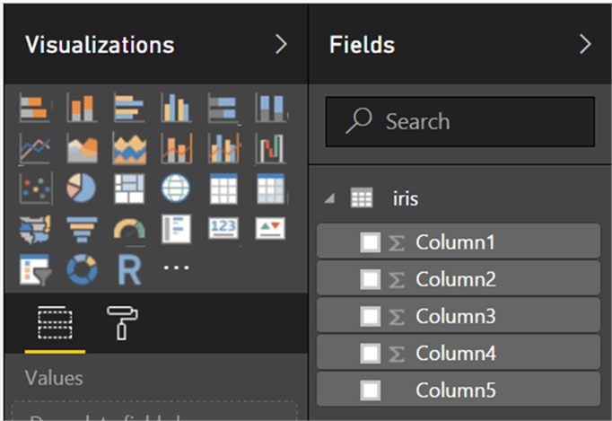 Visualizations and Fields List in PowerBI - Description: Fields List