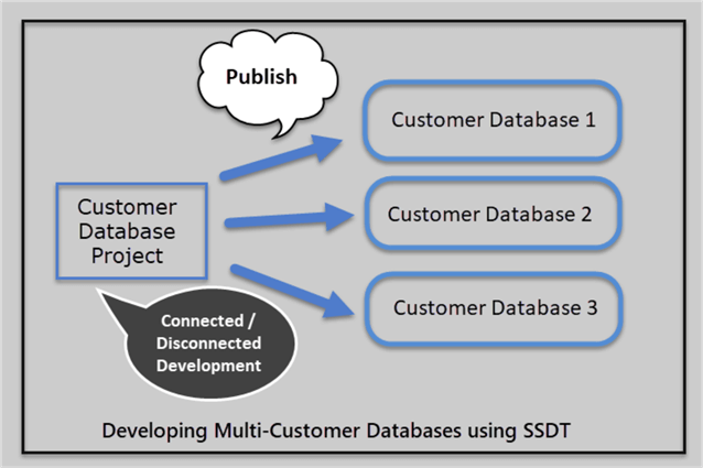 customer database project