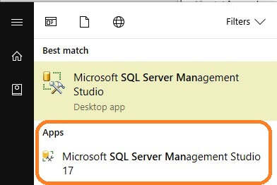 SQL Server v17.x Management Studio launch options