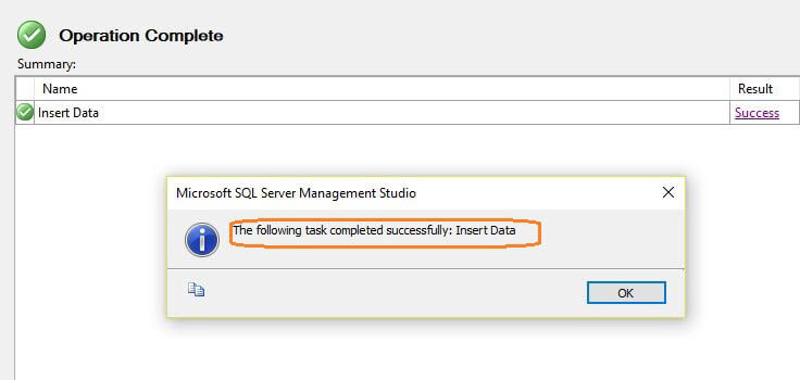 Data insert is complete in the Import Flat File Wizard in SQL Server Management Studio