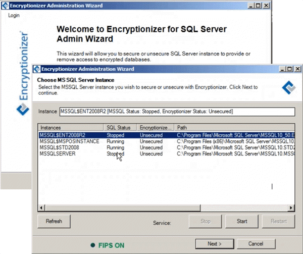 encryptionizer administration wizard choose sql server instance