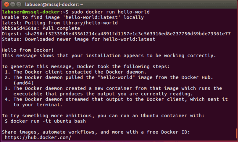 SQL Server 2017 installation on Ubuntu using Docker