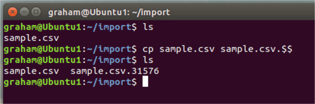 cp linux command