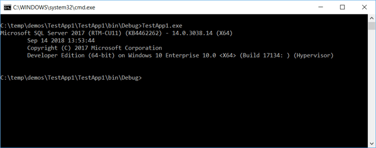 "This is the output when running our demo C# program ""TestApp1""."