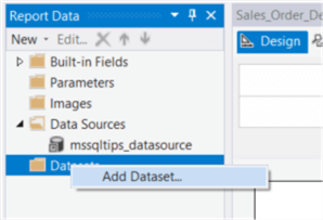 "The screenshot demonstrates how to select the ""Add Dataset…"" item from the context menu."