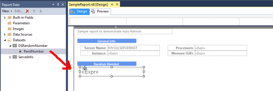 Random number embedded in the SSRS Report