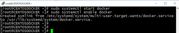Start the Docker daemon and enable it to automatically to launch on server boot