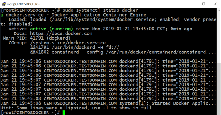 verify that Docker on Linux is running
