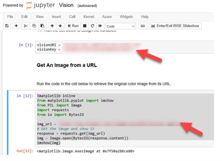 Python code needed to get image from URL