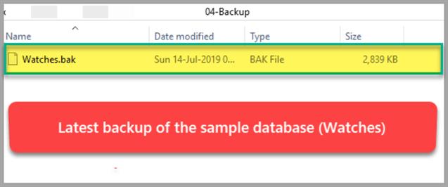 manage multiple database backup formats in sql server data