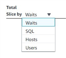 Users can choose to slice the database load by any of the four attributes