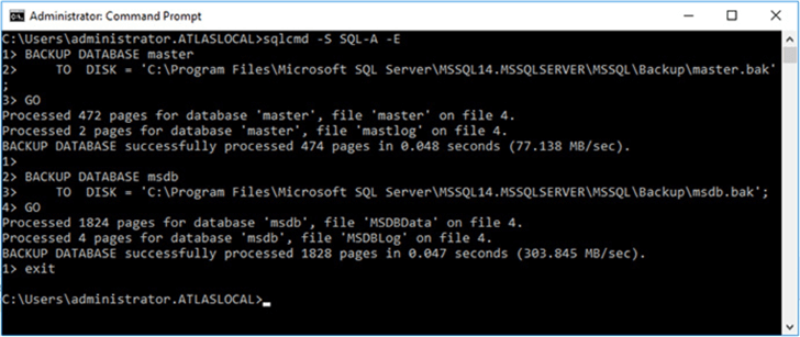 Using sqlcmd to back up the master and msdb databases.