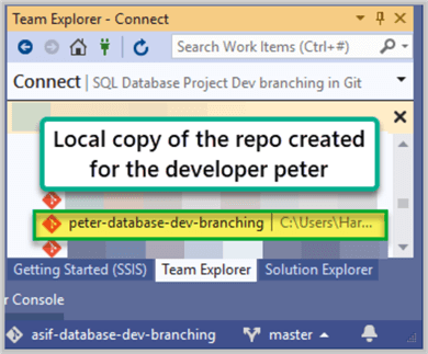 Local copy of the repo created for the developer Peter