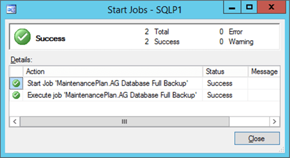 Backup job successful - Description: Backup job executed successfully but no backup was generated