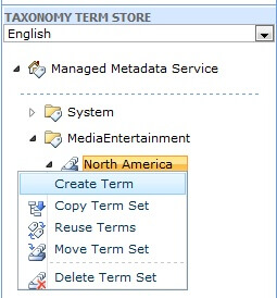 taxonomy term store