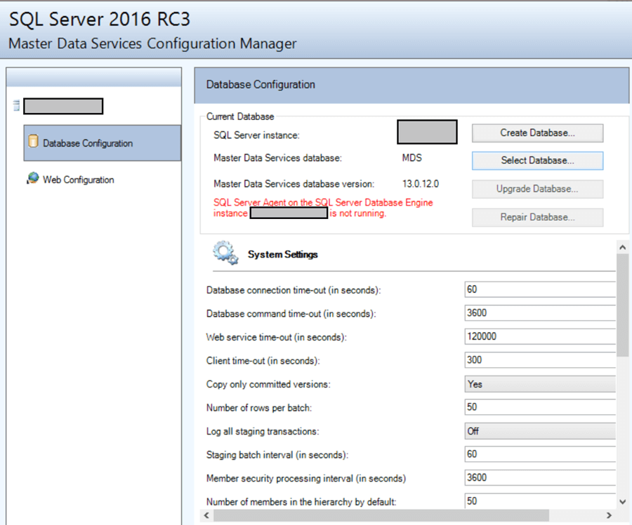 SQL Server Master Data Manager Web Application