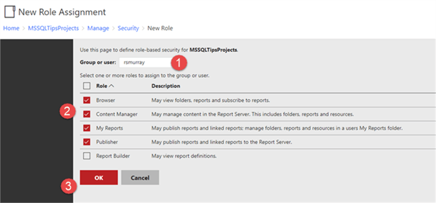 SQL Server Reporting Services SSRS 2017 Website Security and